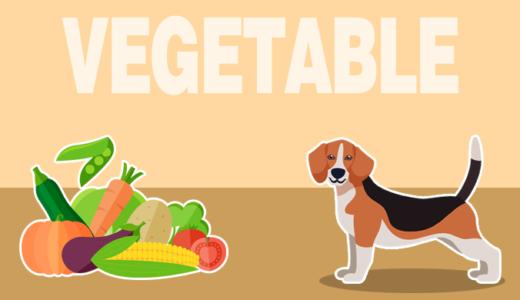 犬はかぼちゃを食べても大丈夫!種やわたの使い方や栄養素・レシピをチェック